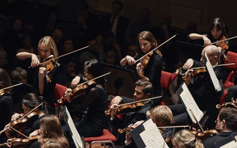 Het Concertgebouworkest | Foto copyright: Anne Dokter/Koninklijk Concertgebouw Orkest